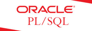 What's the difference between PL/SQL and SQL?